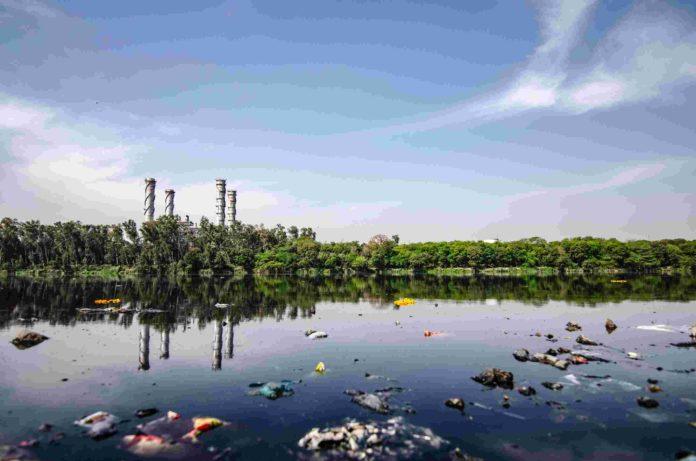douse waste incineration 2020-Bravo Filipino