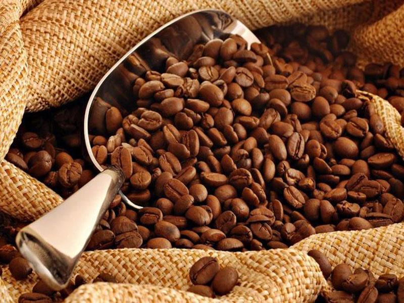 Benguet Arabica Coffee Revised